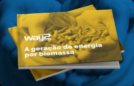 Conheça a geração de energia por Biomassa